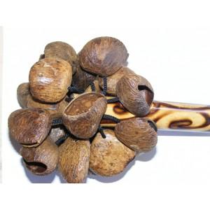 Natural Bali Nut Shaker / Chestnut Shaker / Pangi Seed Shaker - Beautiful Sound